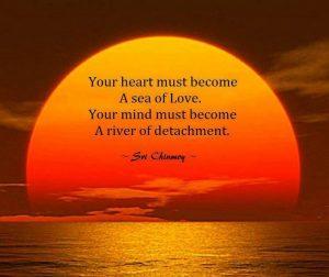 Kiezen voor het hart